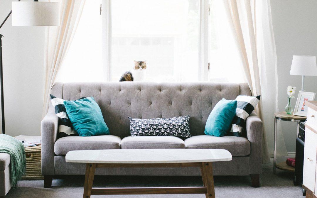 Comment décorer son intérieur de manière moderne ?